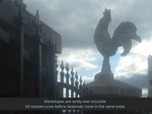 stereotypes all roosters crow at daybreak taqueria rooster july 23 2014