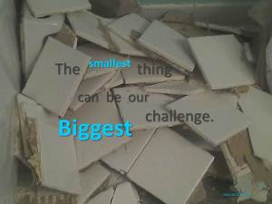 The smallest thing can be our biggest challenge