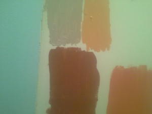 20150123_171954 paint samples