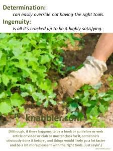 2015 09 01 Determination and Ingenuity jakorte