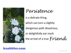 Persistence true friend 10 06 2015