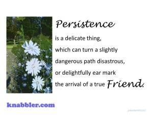 Persistence true friend 10 06 2015