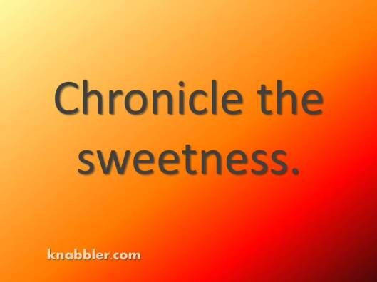 2016-chronicle-the-sweetness-jakorte