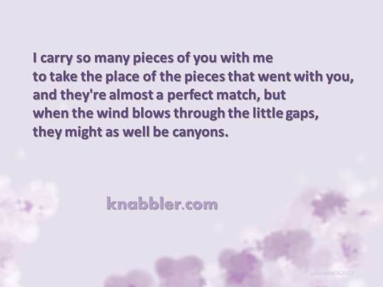 2017 04 04 Lilacs poem 2007 jakorte
