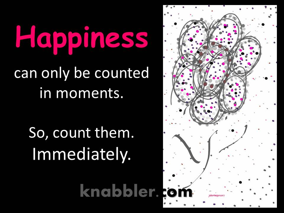 2017 05 02 Happiness can only be counted in moments jakorte