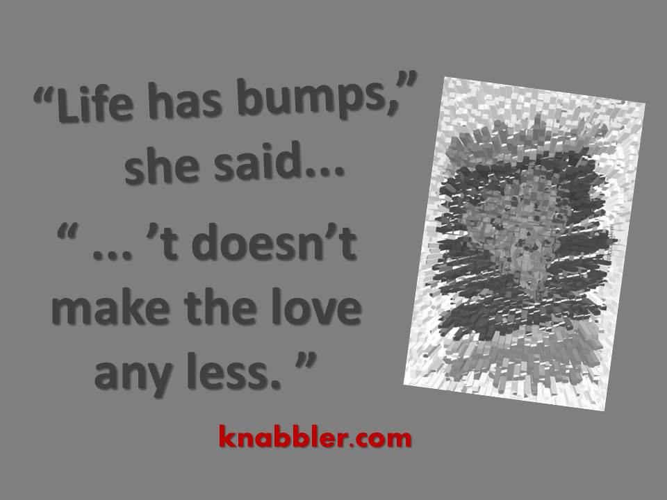 2017 05 23 life has bumps jakorte