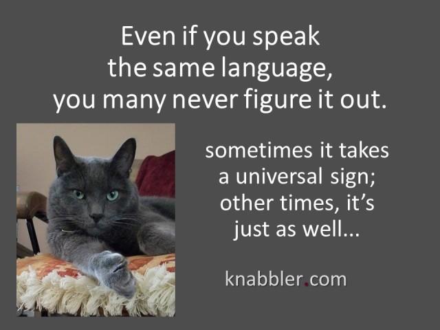 2018 08 07 Even if you speak the same language jakorte
