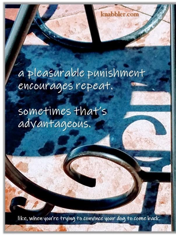 2019 04 02 a pleasurable punishment encourages repeat jakorte