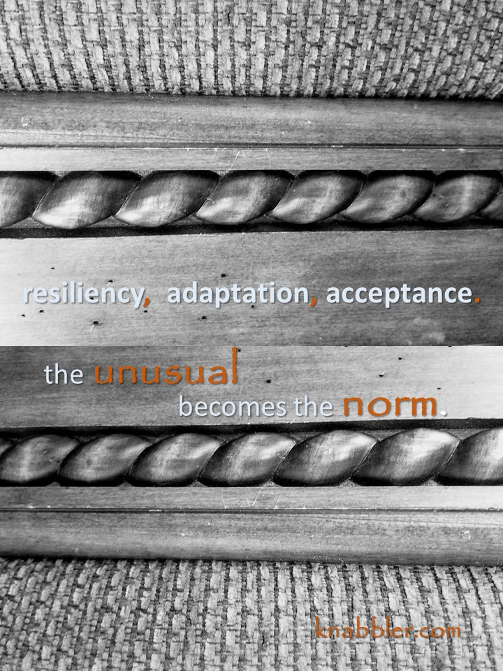 2019 04 23 Resiliency adaptation jakorte