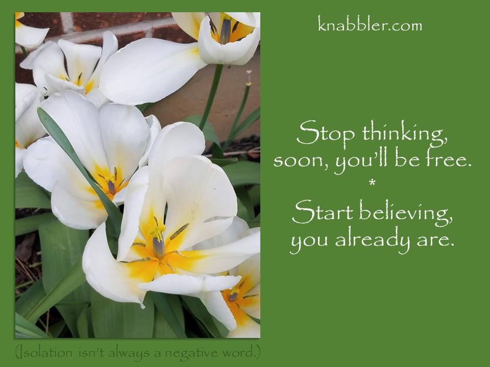 2020 05 12 Stop thinking soon ill be free jakorte